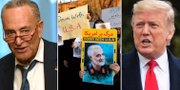 Chuck Schumer/Protester i Iran/Donald Trump. TT