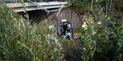 Bussen störtade ner från en bro. Timo Hartikainen / TT / NTB Scanpix
