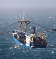En fiskebåt i Engelska kanalen. Arkivbild. Gareth Fuller / TT NYHETSBYRÅN
