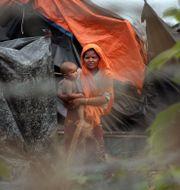 Flyktingar från den muslimska minoritetsgruppen rohingya i norra Rakhine. Min Kyi Thein / TT NYHETSBYRÅN
