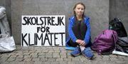 Greta Thunberg utanför riksdagshuset. TT