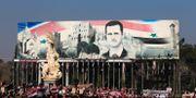 Pro-regim supportrar håler upp Syriens flagga och bilder på Bashar al-Assad.  Hassan Ammar / TT NYHETSBYRÅN/ NTB Scanpix