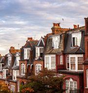 North London properties near High Gate. Shutterstock