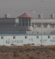 Arbetsläger i Xinjiang/Arkivbild. Ng Han Guan / TT NYHETSBYRÅN