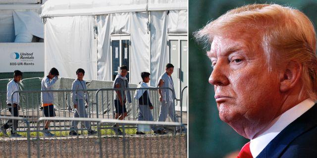 Barn i förvar/Donald Trump. TT