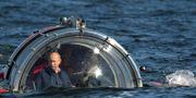 Vladimir Putin blickar ut över sina ägor. Alexei Nikolsky/TT