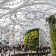 Seattle, Wa circa February 2019 Interior views of the Amazon world headquarters Spheres green house terrariums, top floor with sky view. Shutterstock