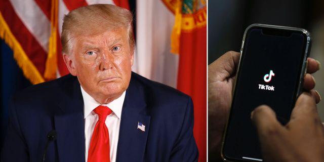 Donald Trump/Tiktok. TT