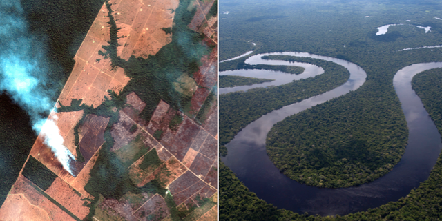 Amazonas. TT