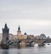 Karlsbron i Prag. Jessica Gow/TT / TT NYHETSBYRÅN