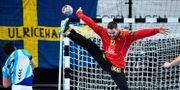 Palicka räddar på Gaston Alberto Mourinos kast. JONATHAN NACKSTRAND / AFP