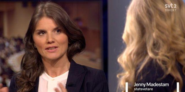 Jenny Madestam, statsvetare. SVT.