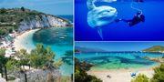 Elba är en plats för själen, där berg, hav och sol smälter samman. Visit Elba