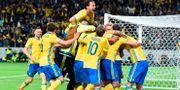 Spelarna firar segermålet mot Frankrike i VM-kvalet. JONATHAN NACKSTRAND / AFP