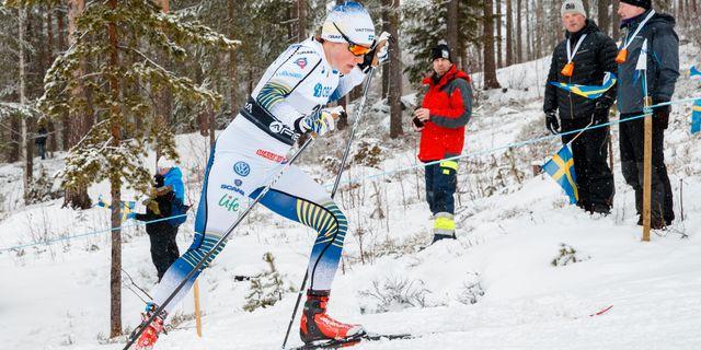 DANIEL ERIKSSON / BILDBYRÅN