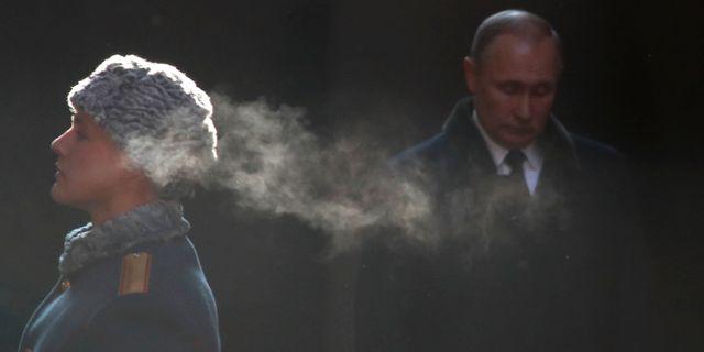 Rysslands president Vladimir Putin, arkivbild. MAXIM SHEMETOV / TT NYHETSBYRÅN