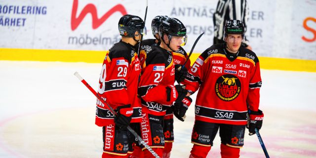 Luleå vann grundserien i SHL. Robert Nyholm/TT / TT NYHETSBYRÅN