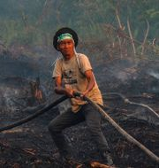 Brandmän i arbete.  WAHYUDI / AFP
