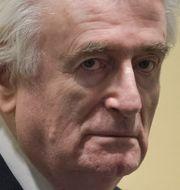 Radovan Karadžić under dagens rättegång. Peter Dejong / TT NYHETSBYRÅN/ NTB Scanpix