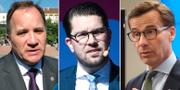 Stefan LÖfven (S), Jimmie Åkesson (SD) och Ulf Kristersson (M). TT