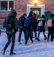 Illustrationsbild. Elever går till skola.  Ole Berg-Rusten / TT NYHETSBYRÅN