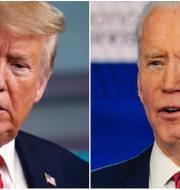 Donald Trump och Joe Biden. TT