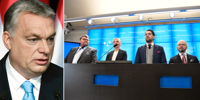 Viktor Orbán/SD presenterar sina toppnamn till EU-valet. TT