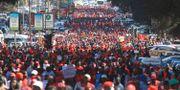 Demonstranter på Harares gator. Tsvangirayi Mukwazhi / TT NYHETSBYRÅN