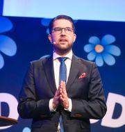 Jimmie Åkesson (SD). Vilhelm Stokstad/TT / TT NYHETSBYRÅN