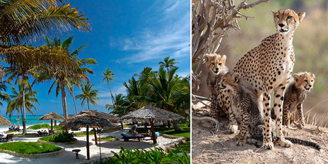Breezes Beach Club & Spa på Zanzibar passar utmärkt att kombinera med safari i Östafrika.
