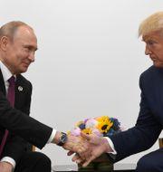 Vladimir Putin och Donald Trump. Susan Walsh / TT NYHETSBYRÅN