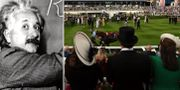 Fysikergeniet Albert Einstein/Royal Ascot. Illustrationsbilder. TT