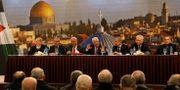 Palestinas president Mahmoud Abbas.  RANEEN SAWAFTA / TT NYHETSBYRÅN